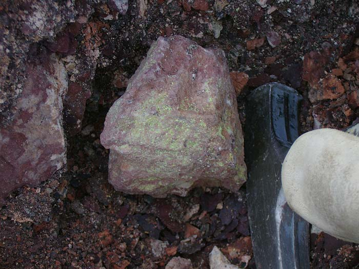 Autunite in silty sandstone in Argentina