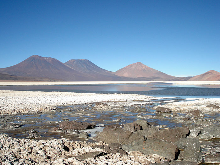 Lithium brines at the Salar de la Isla, Atacama Region, Chile